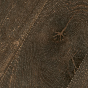 Wood-Agate_t